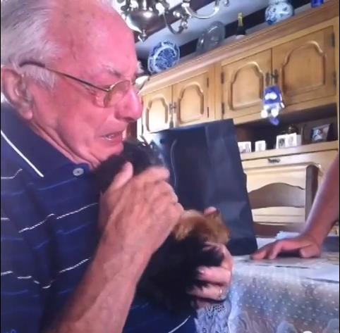 Widowed Grandfather Sobs Over Surprise Gift of Yorkie Puppy