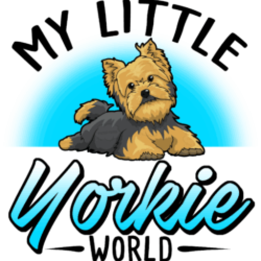 My Little Yorkie World
