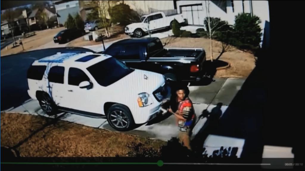 Surveillance Video Caught a Man Stealing a Yorkie