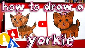 learn how to draw a cute yorkie