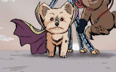 Ducky the Yorkie is a 'Hero-ish' Small Dog